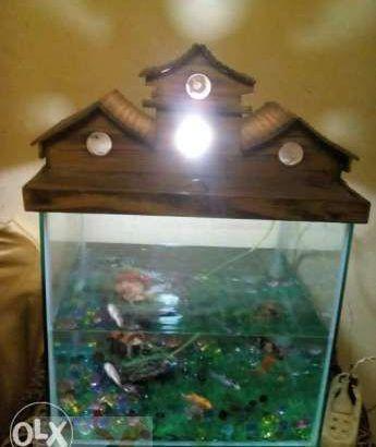 حوض سمك بسعر مغر مقاس ٤٠*٤٠*٤٠