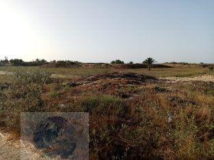 أرض بالقرب من مارينا دلتا علي الدولي الساحلي مسجلة