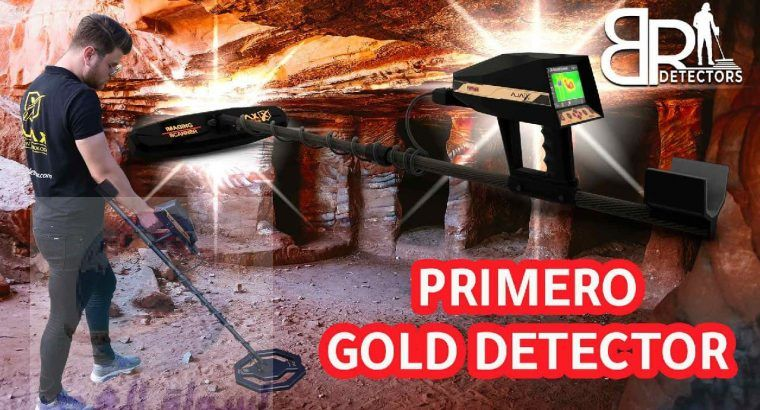 best gold detector Primero | 9 System for treasure