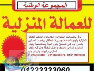 الوطنيه للخدمات العامة01223333060